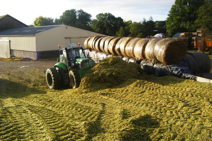 ensilage mais multitrav2