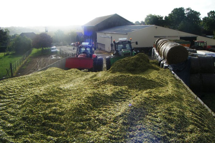 ensilage mais multitrav 2