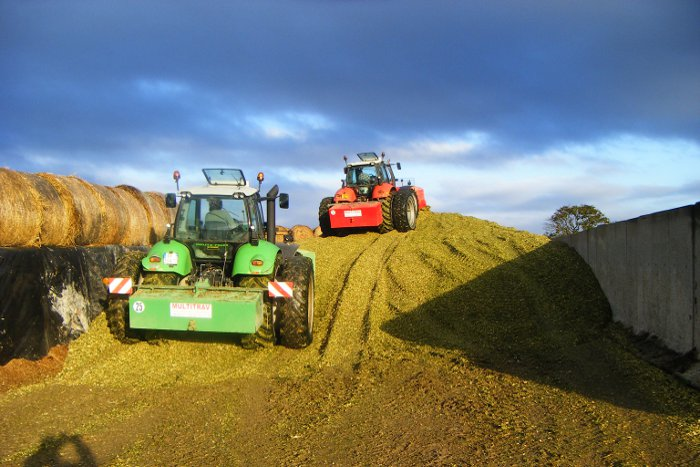 ensilage mais multitrav 4